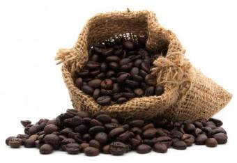 cafe en grains bio